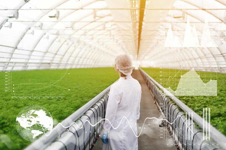 Mastering Environmental Control so Your Indoor Garden Can Thrive