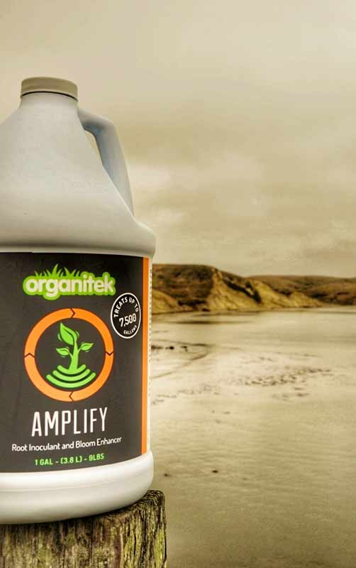 Organitek Amplify Gallon on the coast - glamor shot
